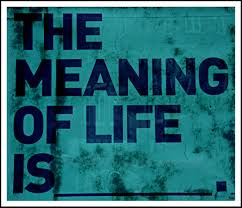meaning of life