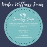 Winter Wellness Series Laundry Soap